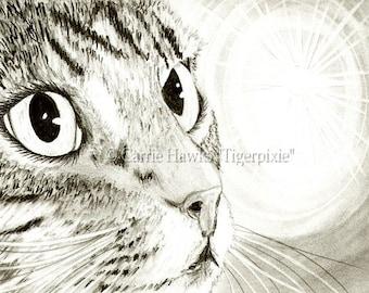 Tabby Cat Drawing Fairy Light Cat Art Big Eye Art Portrait Fantasy Cat Art Limited Edition Canvas Print 8x10 Art For Cat Lover