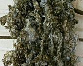 Teeswater Wool Fleece - Hand Dyed Curls - Fiber Art Locks - Moss Green Curls - - Spinning Supplies - Felting Supplies -  Olives and Sage