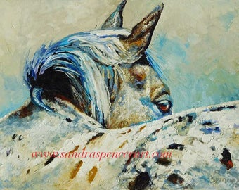 "Original Appaloosa Glance Oil Painting 12""x16"" by Sandra Spencer"