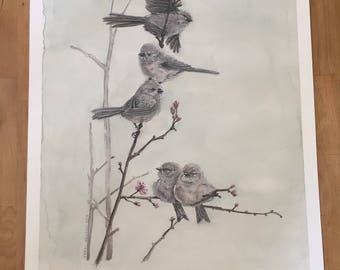 Print: Bushtits in Flowering Plum Tree
