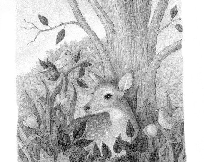 Deer Drawing Black and White Pencil Nature Doe Bird