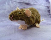 Peluche de Rat agouti Berkshire marron