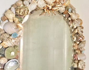 Old Seashell Mirror - Beach Cottage Decor - Sea Shell - Urchins Turquois