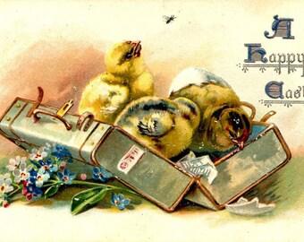 Easter Postcard, vintage, Chicks in suitcase, forget me nots