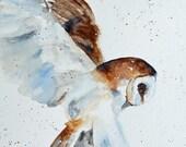 Owl art PRINT from original Owl Painting Owl Art boy room decor print of Owl Picture Owl Wall Art owl nursery art decor