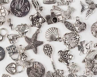 Assorted Charms Mix - 100 pieces
