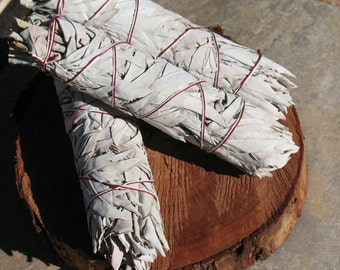 Large White Sage Bundle~Smudging Tool~Herb~Healing~Sacred Space