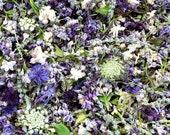 Bulk Dry Flower Confetti, Wedding Decorations, Dry Flowers, Aisle Decor, Dry Wildflowers, Real  Dry Petals, Flower Girl, 2 US cups Confetti