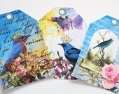 Bluebird Collage - Gift Tags - Set of 6 - Garden Birds - Cottage Chic Tags - Spring Birds - Nature Tags - Flowers N Birds - Bird Thank Yous