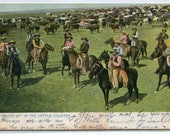 Cowboys Cattle Round Up Ranching American West 1907c Tuck postcard