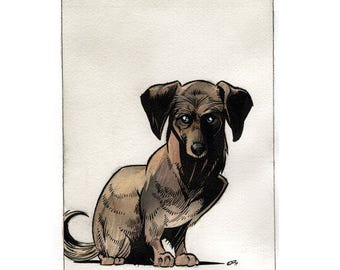 Dachshund Original Watercolor Painting Illustration