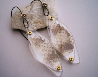 Shed Rattlesnake Skin Specimen Earrings