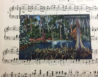Vintage Florida Postcard Linen Unused Cypress Gardens 1940s Collector Ephemera Paper