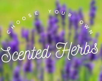 Choose your own herbs - Add Herbs to your scented eye mask - microwavable heating pad - build your own - customized scented sleep mask