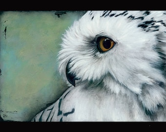 PRINT or GICLEE Reproduction -- Snowy Owl Illustration From My Children's Book -- 12 x 18 -- Only 100 Signed Available  -