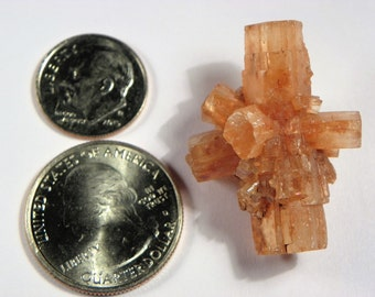 Aragonite Crystal Cluster (Aragonite04) This Aragonite crystal measures 35mm x 20mm weighs 13+ grams