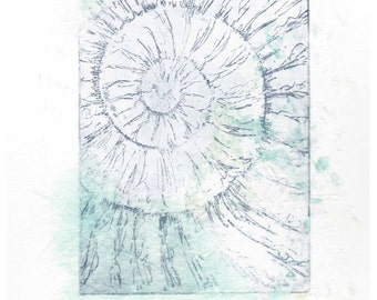 Original ammonite fossil zinc etching no.55 with chine colle jurassic Dorset coast fossil spiral fossil ammonites golden section
