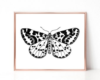 SALE -50% Moth Digital Print Instant Art INSTANT DOWNLOAD Printable Wall Decor