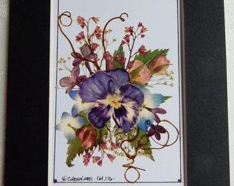 Pressed flower gift. Flowers. Garden art. Gardeners Gift. Pressed Flowers. Pansy picture. Quality Reproduction 5 x 7, matted.