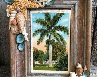 Beachy Distressed Seashell Frame with Sugar Starfish