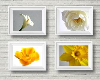Minimalist art, botanical art prints, flower photography, white yellow, daffodil, calla lily, rose, floral art, horizontal prints, photo set