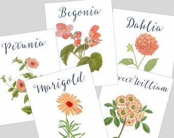 Peach Wedding Table Cards, Orange Wedding Table Cards, Peach Table Numbers, Peach Flower Wedding Table Cards, Peach Wedding Cards
