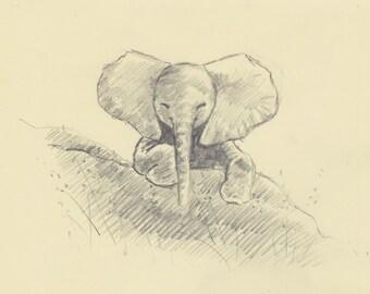 Original Sketch 'Elephant With Big Ears'