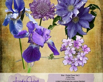 Blue and Purple Flowers Set 2 (Extracted)