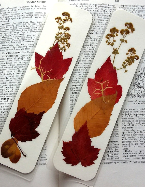 FALL LEAVES BOOKMARKS - Set of 2, Real Natural Preserved Pressed Maine Flowers, Autumn Leaves, Red Maple, Beech Leaves, Nature Lover Gift