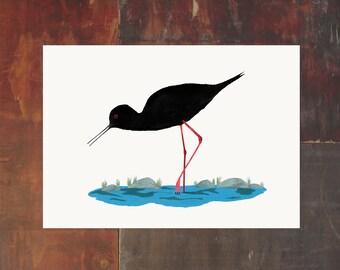New Zealand Bird Archival Art Print - Kaki Black Stilt