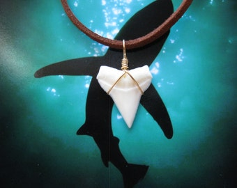 """Shark Tooth Necklace, Modern Day White Shark tooth, Brass wire wrapped, 20"""" Suede leather cord"""