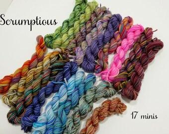 Scrumptious - 17 Sock Yarn Miniskeins - 12 yds each, 204 yds total