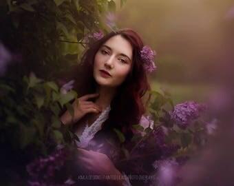 Painted Lilacs Photo Overlays, Photoshop Overlays, Floral Overlays, Painted Overlays for Photographers
