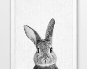 Rabbit Print, Cute Bunny Print, Woodlands Animals Photo, Nursery Baby Shower Gift Wall Art, Baby Animal Black White Photo, Kids Room Decor