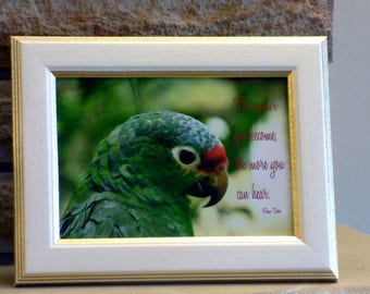 "Framed Quote Print Giclee Ram Dass, ""The Quieter you become the more you can hear"" Parrot Wall shelf desk top decor"