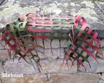 Mesh net scarf, hand dyed, hand feltet