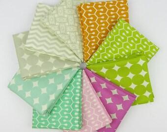 True Colors Favorites Fat Quarter Bundle by Heather Bailey - 10 Fat Quarters - 2.5 Yards Total