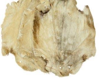 Glacier Wear Beaver Pelt Hide Sheared & Dyed Vanilla Bean Slight Damage bvr1150