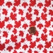 Canada Maple Leaves - red leaves - Small print ( Fat Quarter ) x 1
