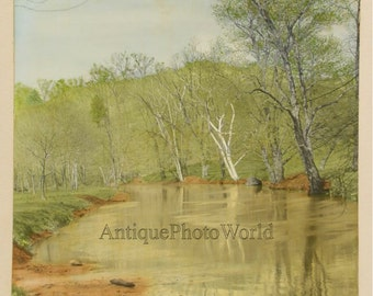 Spring stream in forest vintage hand tinted art photo