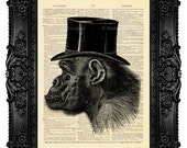 Monkey Painting, Funny Groomsmen Gift, Monkey Wall Decor, Orangutan , Old Dictionary Print, Dictionary Art Print Vintage, Geekery Print 196