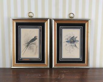 Vintage Set of Framed Prints
