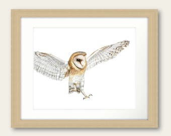 Wise One Owl Limited Edition Print Print Artwork Picture