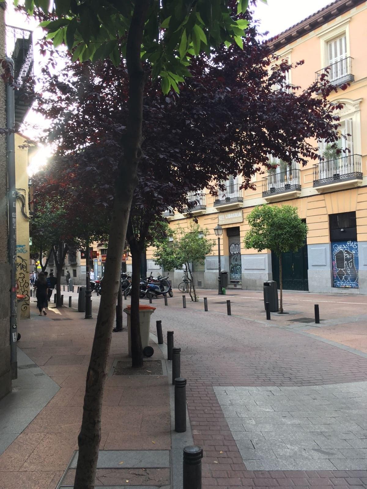 Calle del Pez