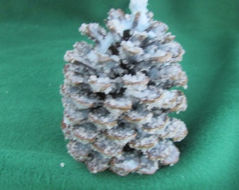 Scented Pine Cones Fire Starters-All Natural- Soy Wax