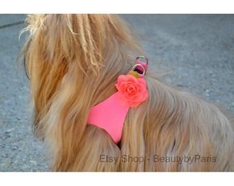 Floral Harness Accessory- Read full description for details!