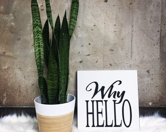 Why Hello - Frameless sign