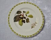 RESERVED Vintage Queens Hookers Fruit Bread Dessert Plate Cherry Blossom Royal Horticultural Society England PanchosPorch