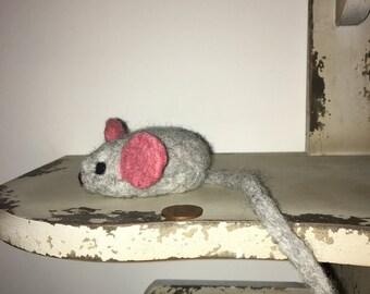 Big ear Mouse