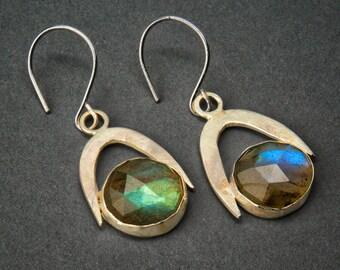 Fierce Dangle Earrings